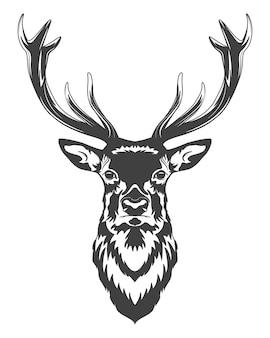 白で隔離のモノクロの鹿の頭