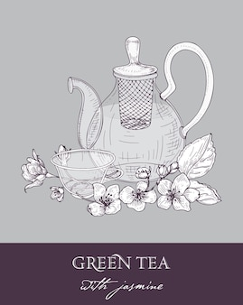 Monochrome drawing of teapot, cup of green tea, jasmine leaves and flowers on gray