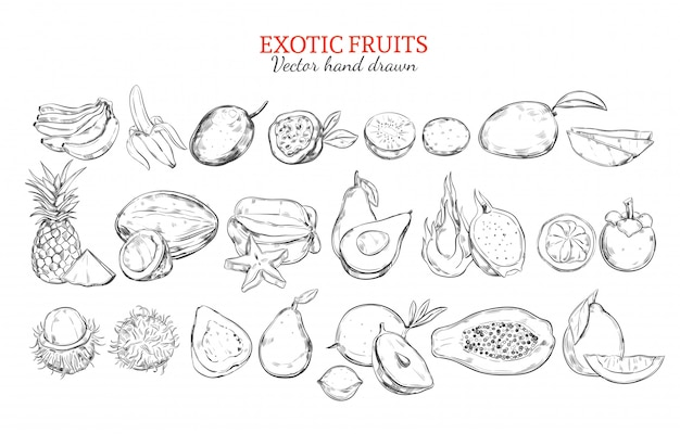 Monochrome exotic and tropical fruits collection