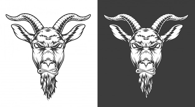 Monochrome goat illustration