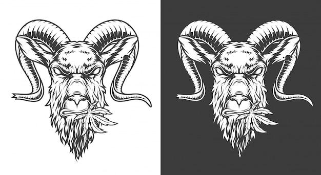 モノクロのヤギのイラスト