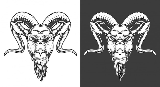 Monochrome goat illustration