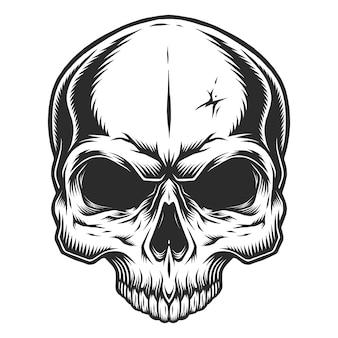 頭蓋骨の白黒イラスト