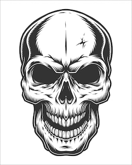 Monochrome illustration of skull