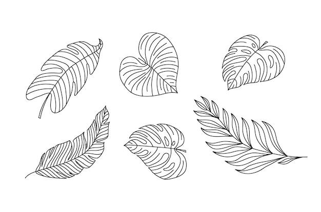 Monoline 벡터 드로잉 이국적인 열대 잎 몬스테라 식물입니다. 가정 벽을 위한 인쇄 가능한 장식 세트 관엽 식물