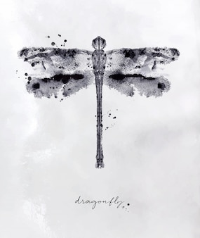Monotype dragonfly drawing with black and white on paper background