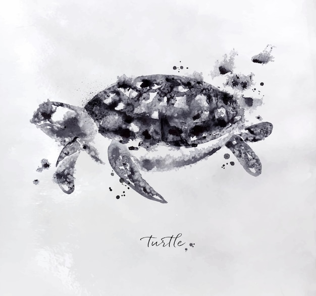 Monotype turtle drawing with black and white on paper background