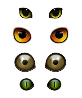 Occhi realistici di gatti animali mostro