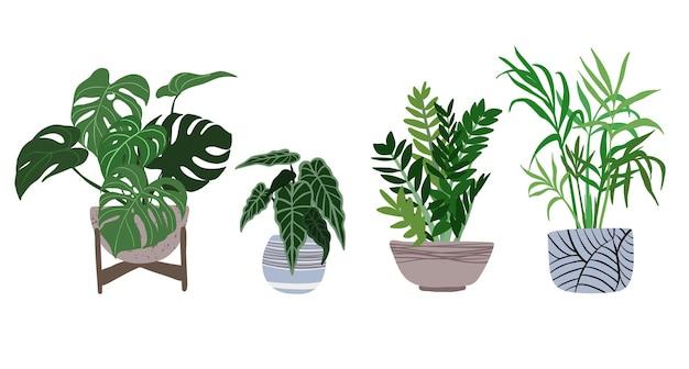 Monstera, alocasia, zamioculcas, chamedorea in pots, 유행 손으로 그린 평면 그림, 도시 정글 디자인, 열대 식물.