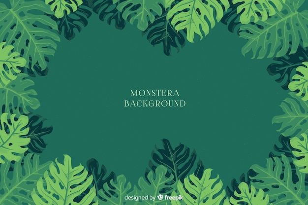 Monstera background
