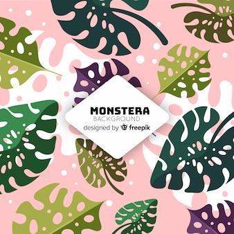 Monstera background