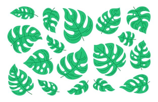 モンステラリーフ漫画セット。熱帯の緑の植物のコレクション。手描き自然のエキゾチックな要素のジャングルのイラスト