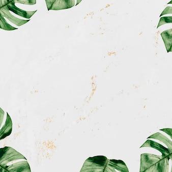 Monstera leaf frame on marble textured background