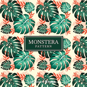 Monstera leaves background