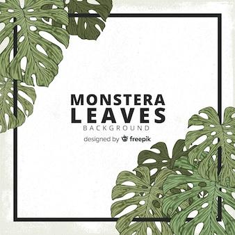 Monstera leaves corners background