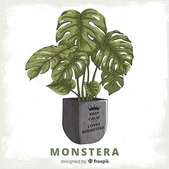 植木鉢の背景にモンステラの葉