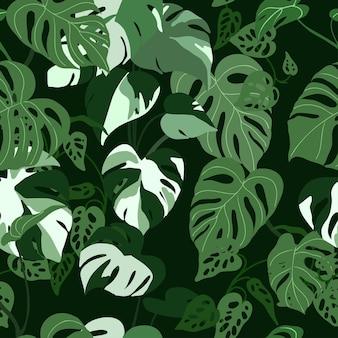 Монстера листья бесшовные модели