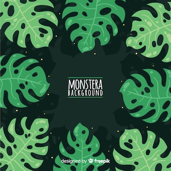 Листья монстера