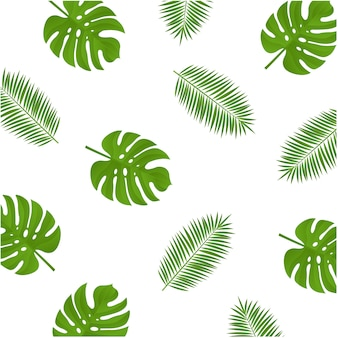 Monstera and palm branch background