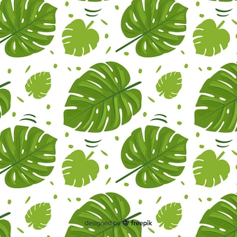 Monstera pattern