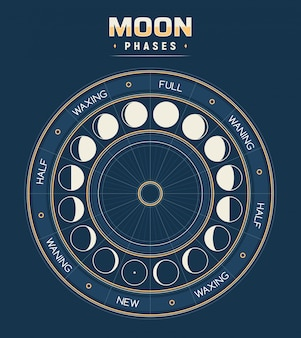Moon phases, calendar of lunar cycles.