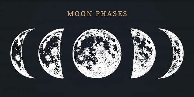 Moon phases. hand drawn illustration of cycle from new to full moon.