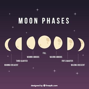 Фазы луны иллюстрация