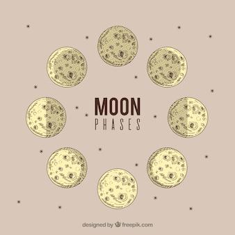 Фазы луны в старинном дизайне Бесплатные векторы
