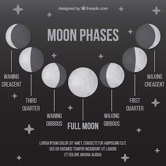 Moon phases with stars in gray tones