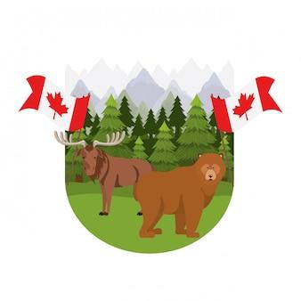 カナダのアメリカヘラジカとクマの動物