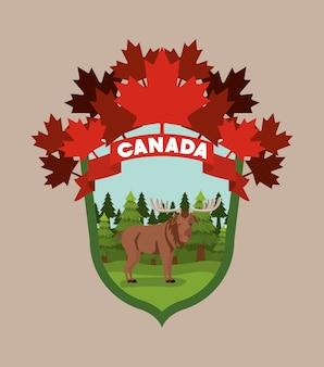 Moose animal and pine trees