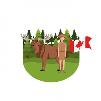 Moose forest animal of canada