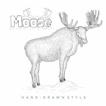 무스 손으로 그린 동물 그림