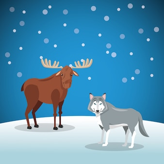 Moose and wolf with snowy background image
