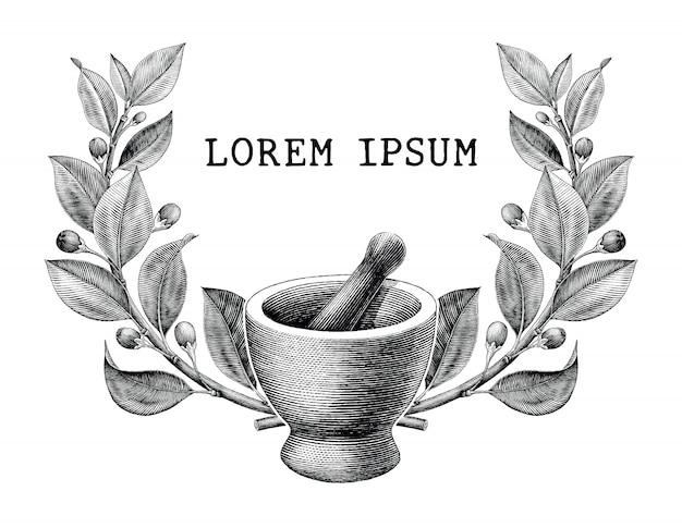 乳鉢と乳棒とハーブフレームヴィンテージ彫刻イラストロゴが白い背景で隔離