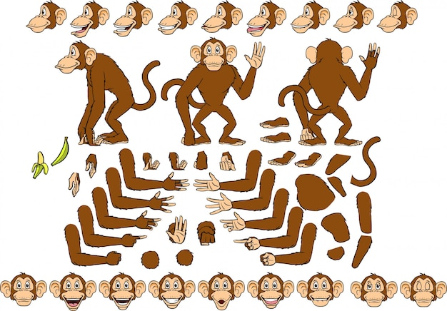 Morty monkey