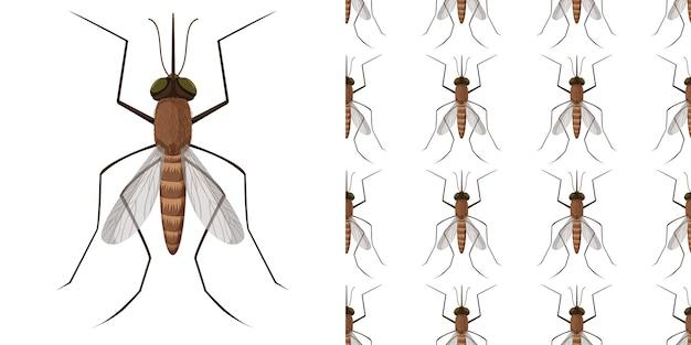 Комары насекомые, изолированные на белом фоне и бесшовные