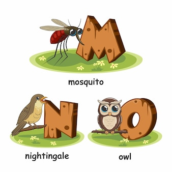 Mosquito nightingale bird owl wood alphabet animals