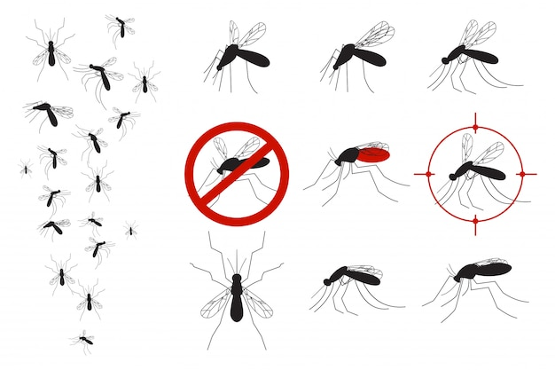 Mosquitoes and gnats vector set