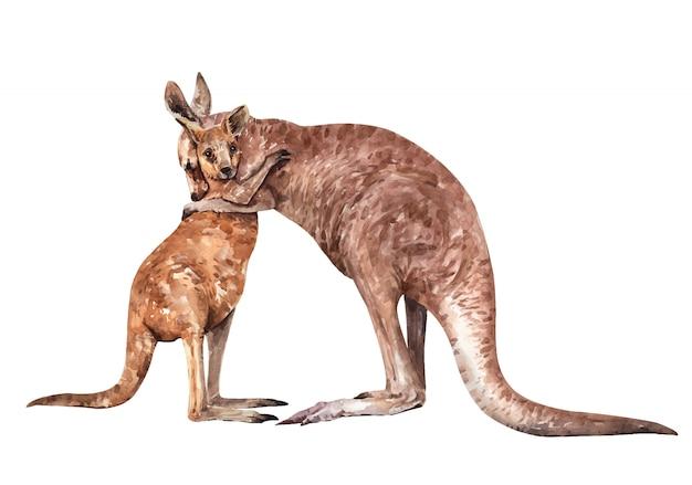 엄마와 아기 캥거루 포옹 페인트. 호주 동물 수채화.
