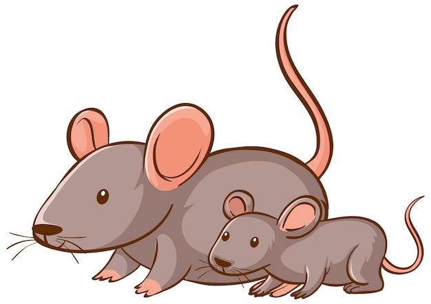 白い背景の上の母と赤ちゃんのマウスの漫画