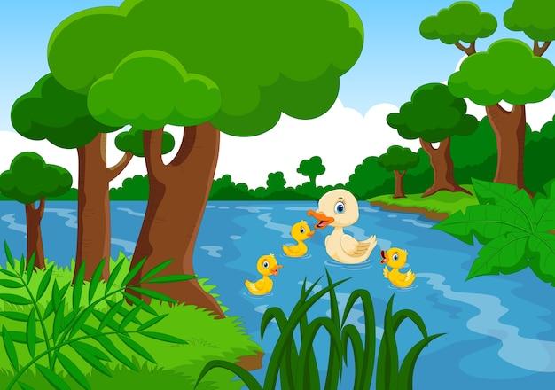 Мама-утка плавает со своими тремя маленькими милыми утятами в озере