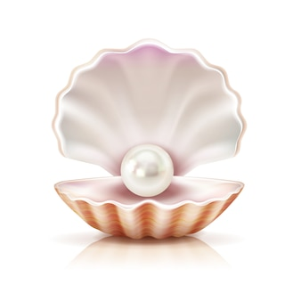Mother of pearl shining in open shell