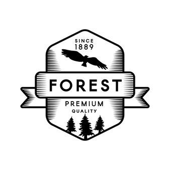 산 캠프 기하학적 상징 디자인 템플릿입니다. 야생 숲 실루엣 독수리 흑백 배지입니다. 야외 모험 및 레크리에이션 그래픽 배너 개념입니다. 플랫 만화 벡터 일러스트 레이 션