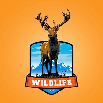 엠블럼 디자인을위한 산 사슴 로고