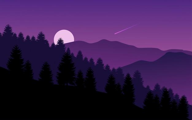 밤에 산 숲