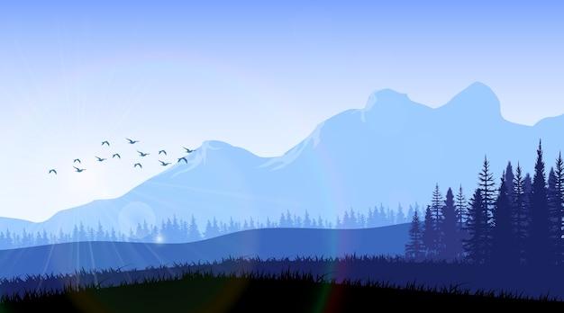 Горный лес фон