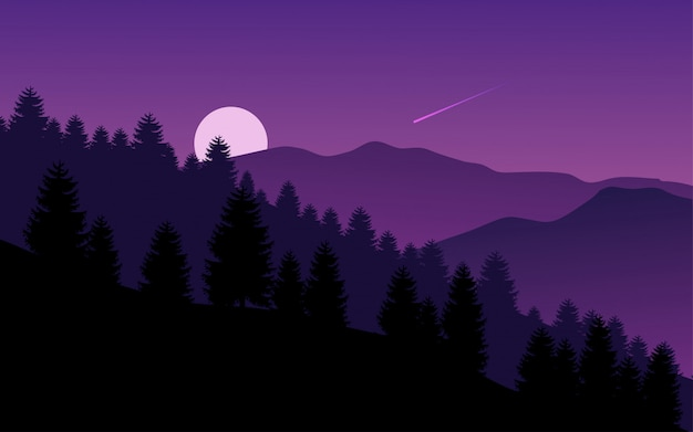 Mountain forest at night