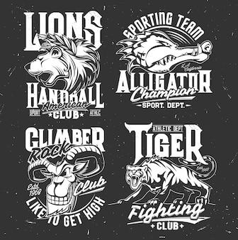 シロイワヤギ、ワニ、ライオン、トラのマスコット。ニヤリと咆哮する野生動物スポーツクラブセットの頭