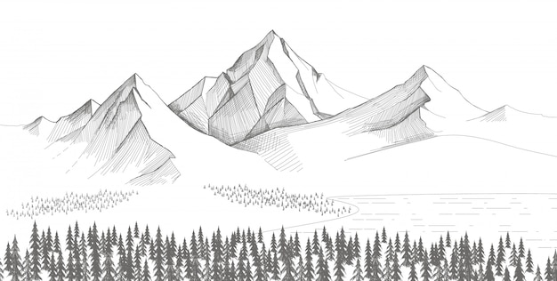 Mountain landscape, forest pine trees sketch. hand drawn illustration.